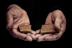 Bread in hand stock photography