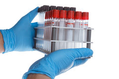 Hands with a empty test tube Stock Image