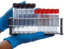 Hands with a empty test tubes and tubes with clot activator on l Stock Photo