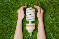 Hands with energy saving eco lamp over grass Stock Photos