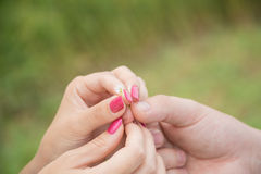 Hands entwined together. Hands of a young couple holding a small flower Stock Photo