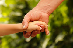 Hands family grandson and old grandmother nature Royalty Free Stock Photo