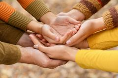 Hands of a family together on autumn background. Closeup royalty free stock photo