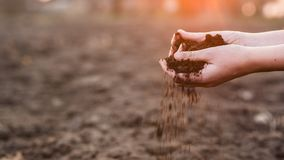 The hands of the farmer crush with pour out the soil over the field. Spring work