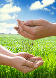 Hands of farmers with soil Royalty Free Stock Photography