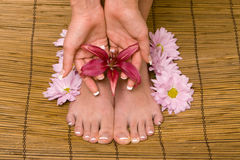 Hands and feet with flowers Stock Image