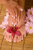 Hands and feet in manicure and pedicure Royalty Free Stock Photography