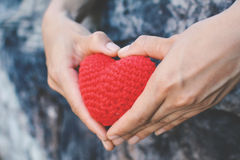 Hands female holding red heart on nature background stock image