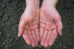 Hands. Female hands over the fields in the form of holding,  photography Royalty Free Stock Images