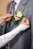 Hands fiancee and bouquet of groom Royalty Free Stock Image