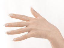 Hands and Fingers Royalty Free Stock Image