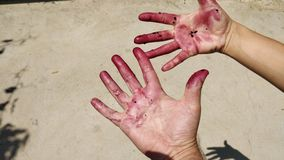 Hands and fingers painted red. stock photography