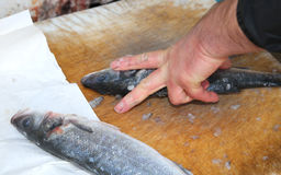 Hands the fishmonger at the seafood market during cleaning Royalty Free Stock Images