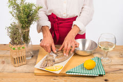 Flaying a cuttlefishl. Hands flaying a fresh cuttlefish ready to be cooked Royalty Free Stock Photo