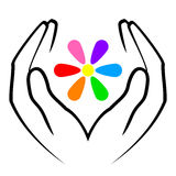 Hands and flower. Vector illustration of hands and flower Stock Photos