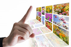 Hands with flowers. Royalty Free Stock Photography
