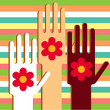 Hands with flowers Royalty Free Stock Photos