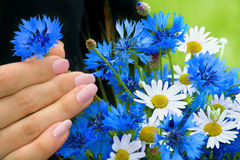 Hands and flowers. Hand of woman on background of the flowers royalty free stock photo