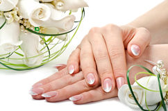 Hands and flowers. Beauty Royalty Free Stock Images