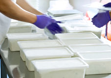 Hands in a food factory. Hands of workers storing food in plastic boxes in a food factory royalty free stock photography