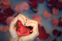 Hands in the form of heart Royalty Free Stock Photo