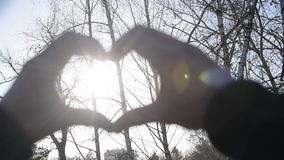 Hands in form of a heart with sunshine. Human hands in form of a heart shape with sunshine in a forest stock footage