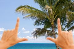 Hands Framing Palm Trees and Tropical Waters Stock Photos