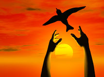 Hands Free bird into sunset vector illustration