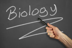 Hands in front of chalkboard. Mans hand pointing to a biology message on a chalkboard Royalty Free Stock Image