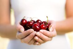 Hands full of cherries Stock Image
