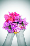 Hands full of flowers Stock Image