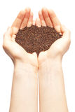 Hands full with mustard seeds stock images
