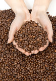 Hands full of roasted coffee beans Royalty Free Stock Photos