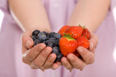 Hands full of strawberries and blueberries Stock Image