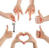 Hands. Gesture. Collection. Stock Photo
