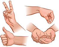 Hands and gestures. Set of hand gestures from different angles. EPS 8 Stock Image