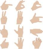 Hands gestures illustrations. Various hands gestures vector illustrations stock illustration