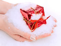 Hands with gift in snow Royalty Free Stock Photos