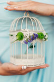 In the hands of a girl a cage for a bird Royalty Free Stock Images