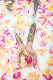 Hands of a girl with colorful tattoos on the surface of water wi. Th milk and flower petals. She holds some petals on her palms. Closeup top view photo. Indoors stock images