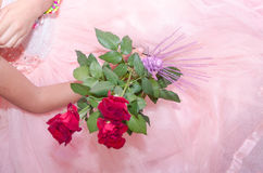 Hands of the girl on a gentle pink wedding dress with three fresh red roses Royalty Free Stock Images