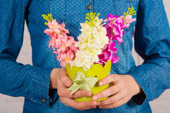 Hands of a girl with spring flowers Royalty Free Stock Photo