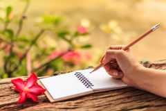 Hands of girl writing. With a pencil in notebook and Desert Rose standing on old wooden texture with green nature background. Closeup, Select focus Stock Photography