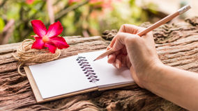 Hands of girl writing. With a pencil in notebook and Desert Rose standing on old wooden texture with green nature background. Closeup, Select focus Royalty Free Stock Photography