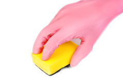Hands in glove with latex  holding sponge Stock Image