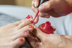 Hands in gloves cares about a woman`s foot nails. Pedicure, manicure beauty salon concept. Nail varnishing in red color. Hands in gloves cares about a woman`s stock images