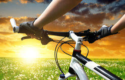 Hands in gloves holding handlebar of a bicycle Royalty Free Stock Images