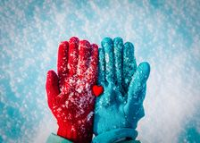 Hands in gloves holding heart in winter nature royalty free stock images