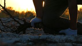 Hands in gloves try to break a tree branch at sunset. A funny view of male hands in white gloves trying to break a tree branch at a splendid sunset on the Black stock video