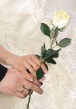 Hands with gold wedding rings  Stock Photos